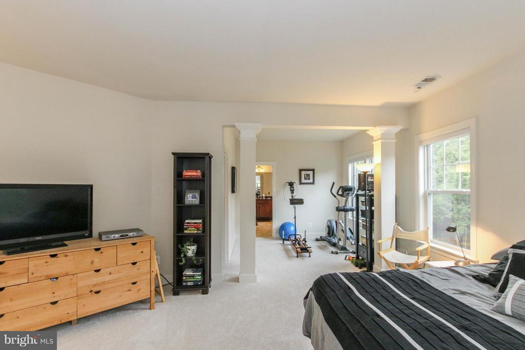Master suite with sitting room - 22360 AGING OAK DR, LEESBURG
