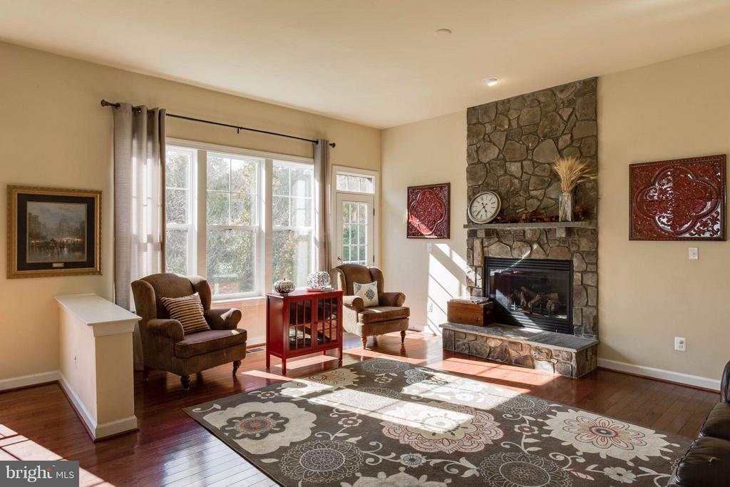 Living Room - 7364 TUCAN CT, WARRENTON