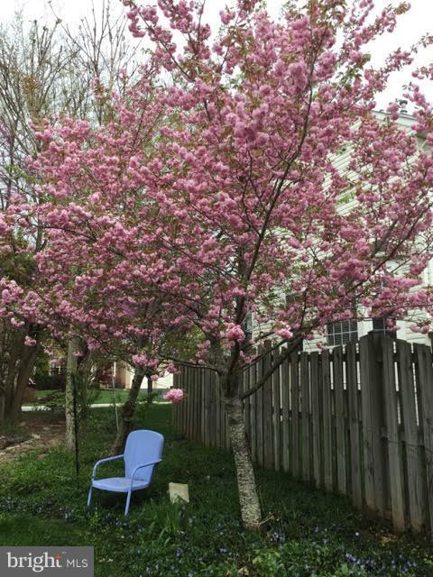 Blooming trees! - 1235 FEATHERSTONE LN NE, LEESBURG