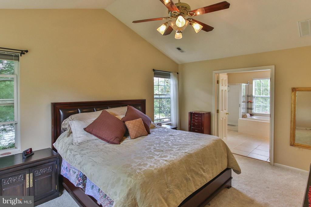 Dreamy msuite offers cathedral ceiling, w/i closet - 1235 FEATHERSTONE LN NE, LEESBURG
