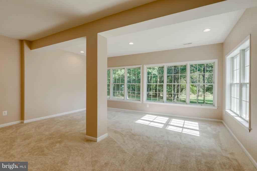 Lower Level Bonus Room (possible 5th Bedroom) - 1286 GATESMEADOW WAY, RESTON