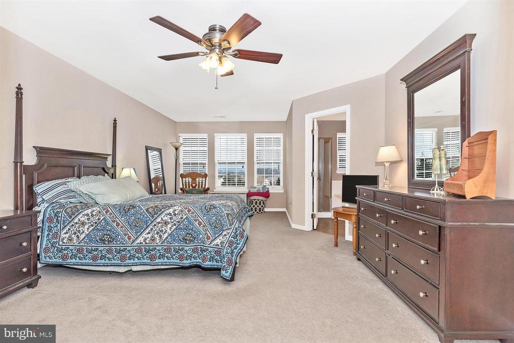 Bedroom (Master) - 708 STONE SPRINGS LN, MIDDLETOWN