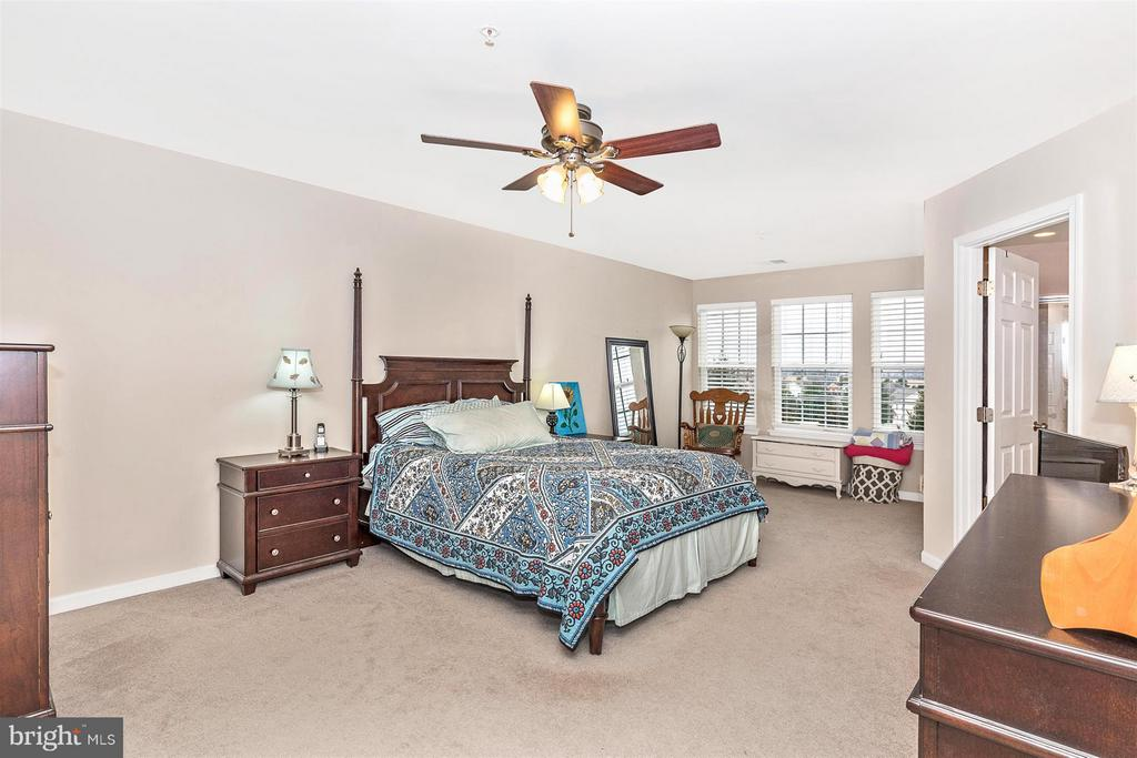 Bedroom (Master) - 708 STONE SPRINGS LN, MIDDLETOWN