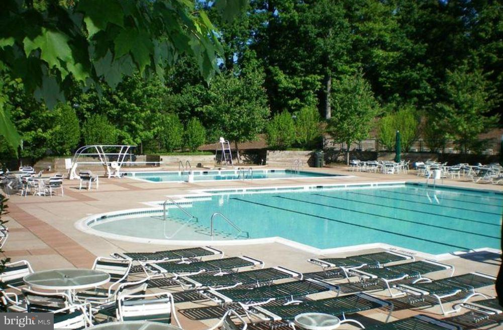 Community Pool - 3909 PENDERVIEW DR #1924, FAIRFAX