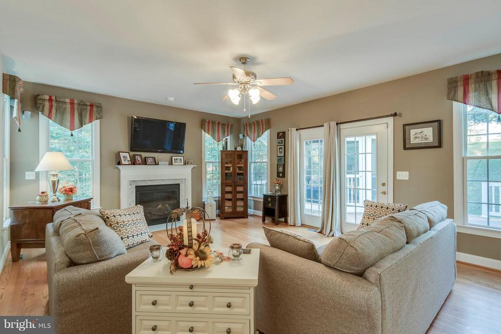 Family Room with Gas Fireplace - 137 SEQUESTER DR, STAFFORD