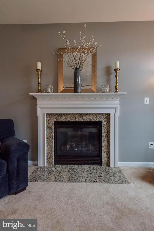 GAS FIREPLACE - 5504 DOUBS RD, ADAMSTOWN