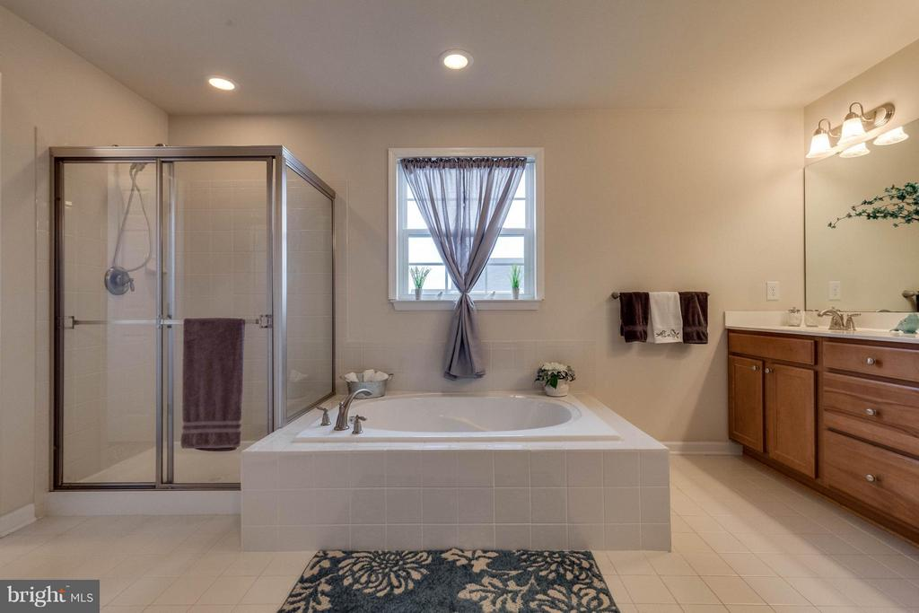 SOAKING TUB AND SEPARATE SHOWER - 5504 DOUBS RD, ADAMSTOWN