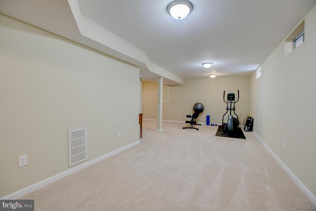 Spacious Basement to use as you wish - 83 TANTERRA DR, STAFFORD