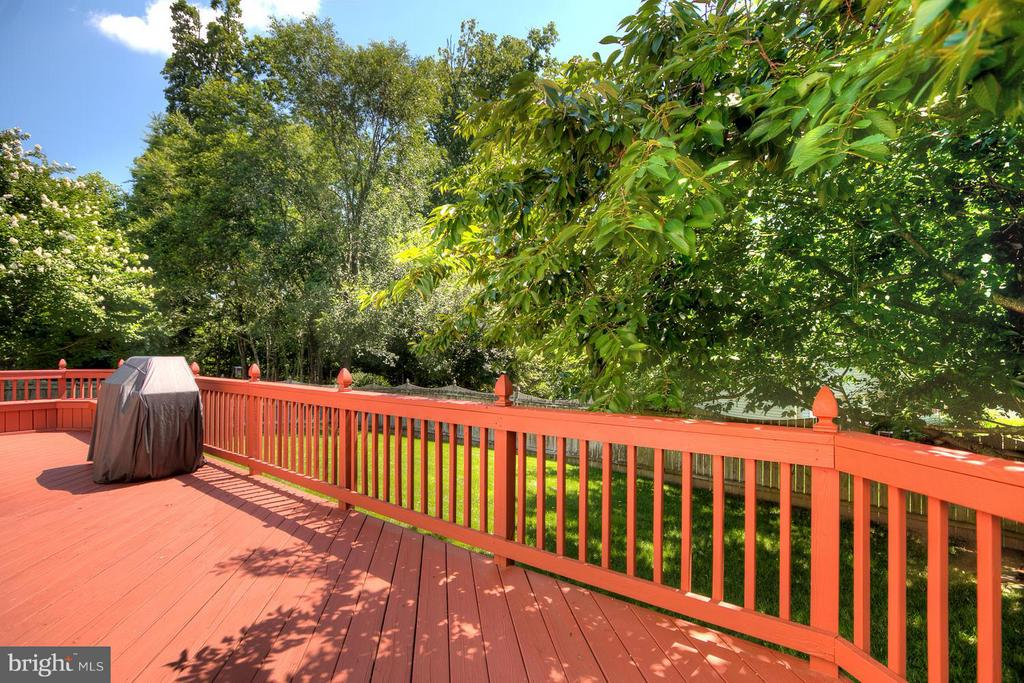 Private Tree-lined Level Backyard - 7 NEVILLE CT, STAFFORD
