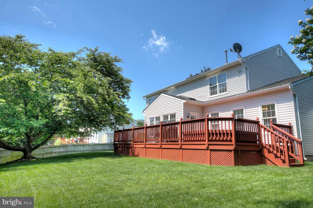 Great Outside Space, Level Yard! - 7 NEVILLE CT, STAFFORD