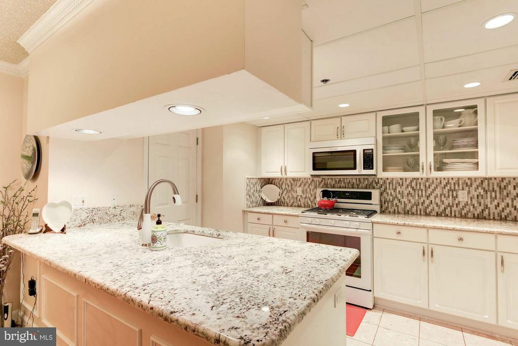 Gourmet kitchen - 1276 WAYNE ST #1221, ARLINGTON