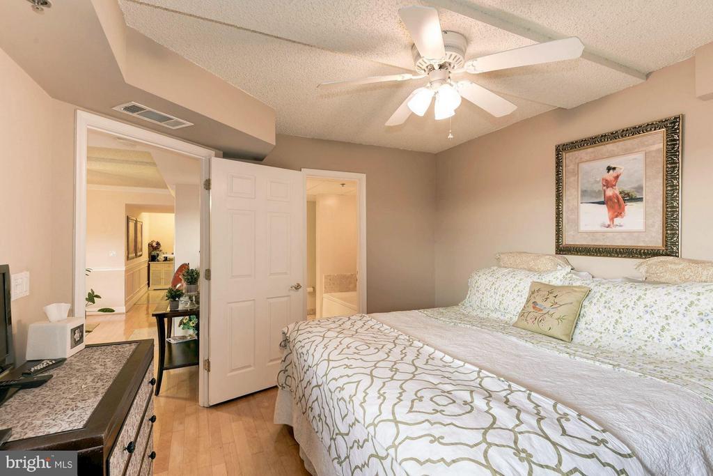 Bedroom attached to bathroom (dual-entry bathroom) - 1276 WAYNE ST #1221, ARLINGTON