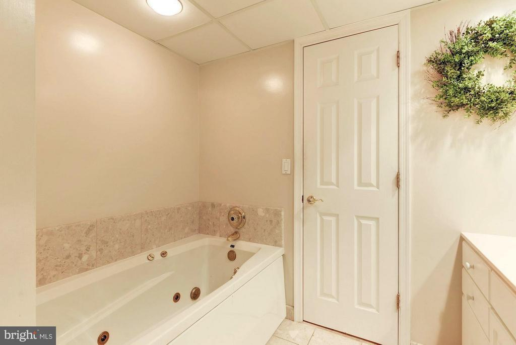 Separate tub - 1276 WAYNE ST #1221, ARLINGTON