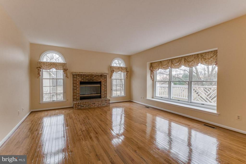 Family Room / fireplace views to rear yard - 20000 GIANTSTEP TER, MONTGOMERY VILLAGE