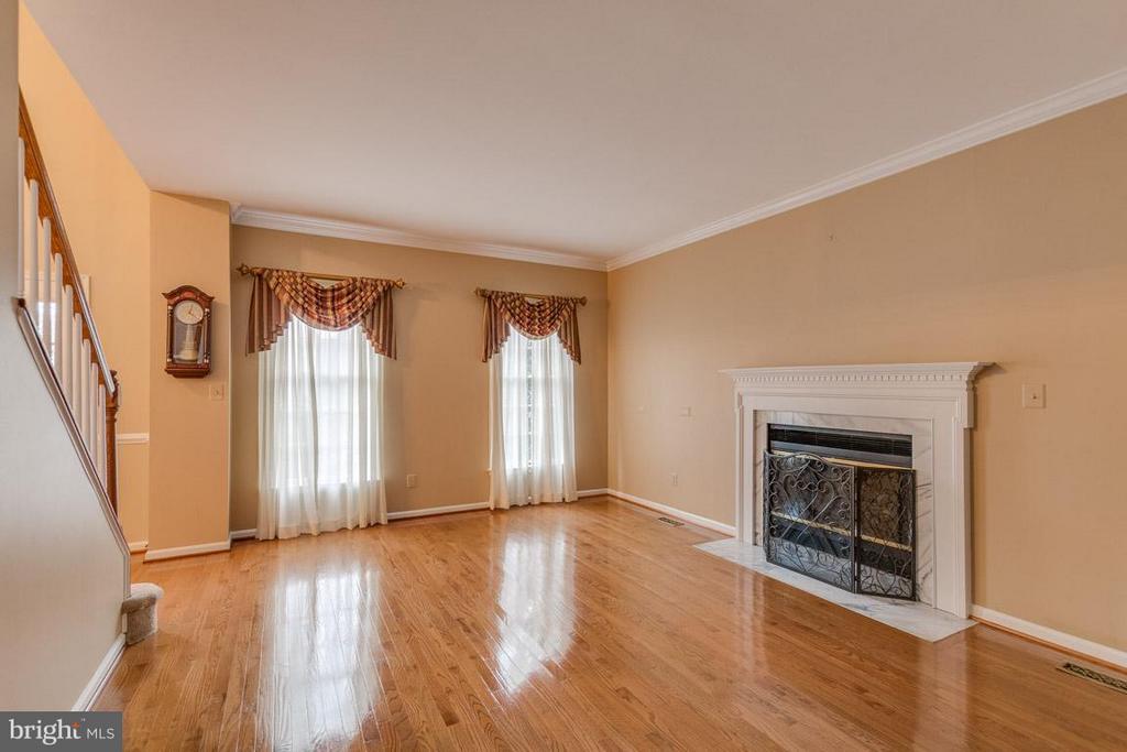 Living room / fireplace - 20000 GIANTSTEP TER, MONTGOMERY VILLAGE
