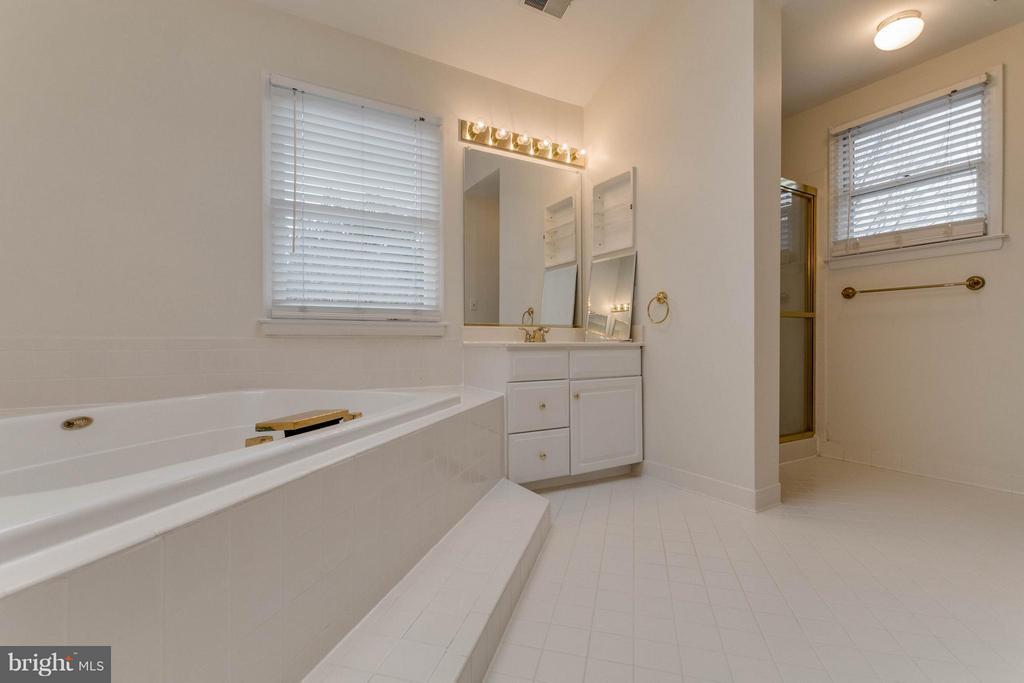 Bath master, shower - 20000 GIANTSTEP TER, MONTGOMERY VILLAGE