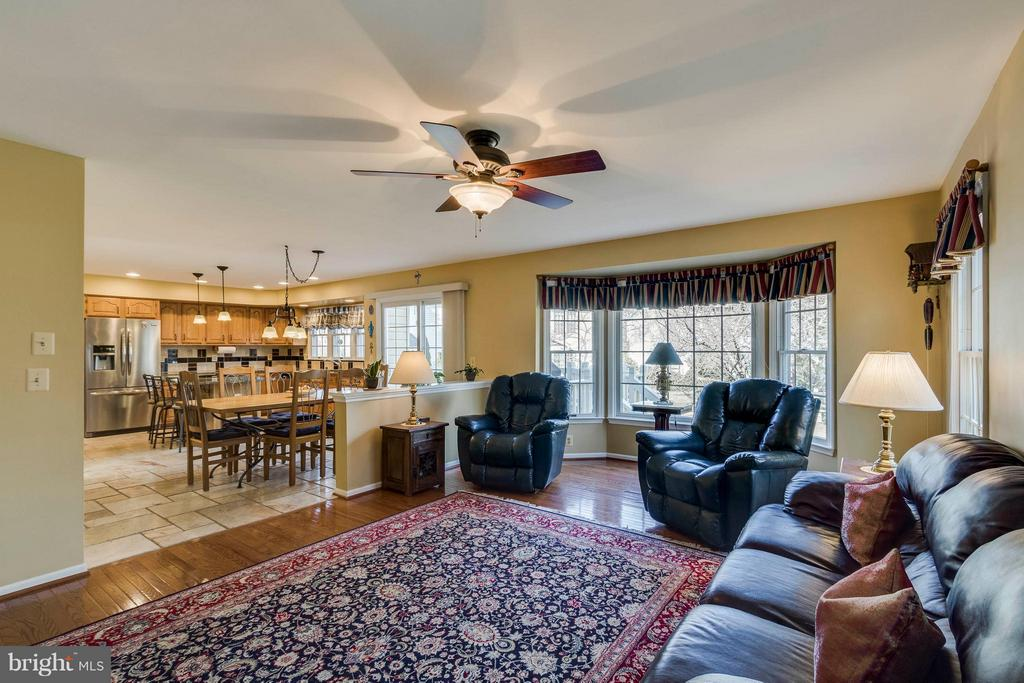 Family Room - 20662 ASHLEAF CT, STERLING