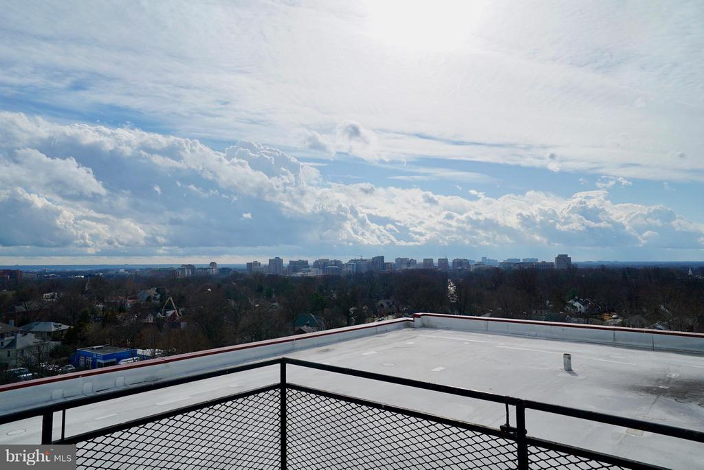 Gorgeous rooftop - 4343 LEE HWY #203, ARLINGTON