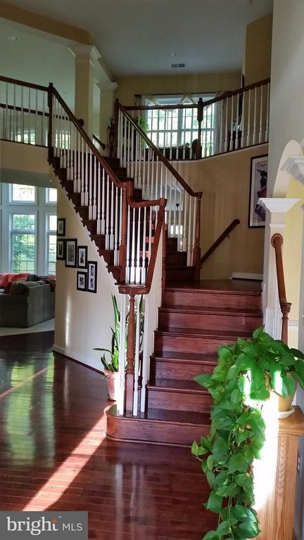 Interior (General) - 3609 STONEWALL MANOR DR, TRIANGLE