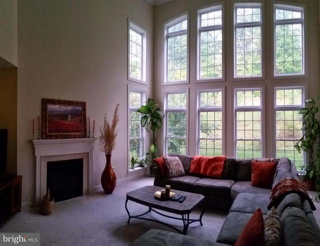 Great Room 24 Ft ceilings private view - 3609 STONEWALL MANOR DR, TRIANGLE