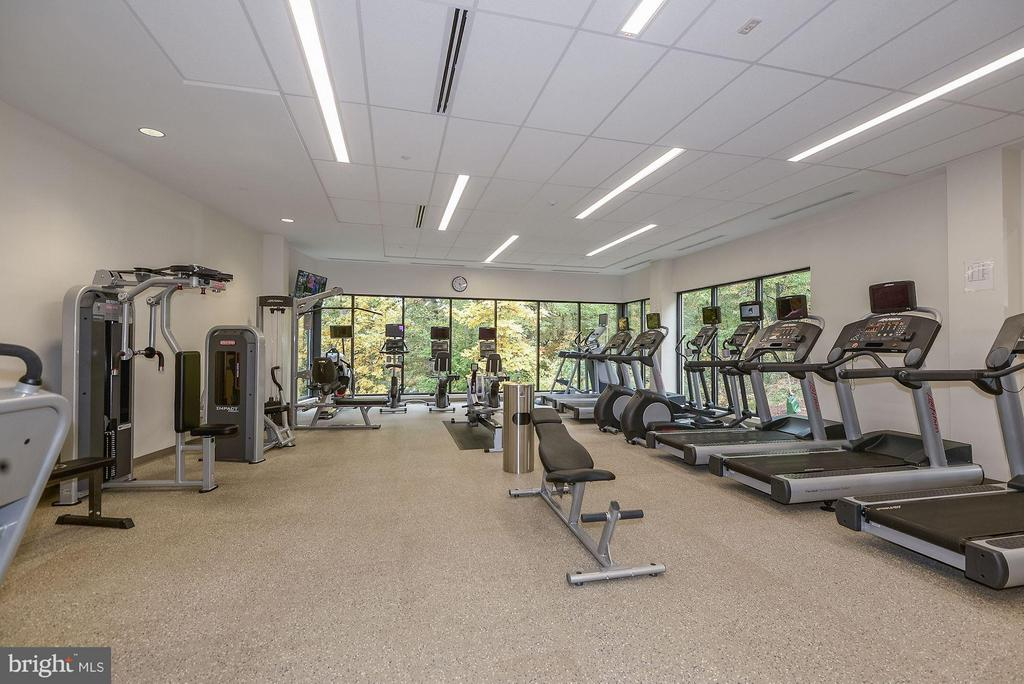Exercise Room/Gym - 5904 MOUNT EAGLE DR #601, ALEXANDRIA