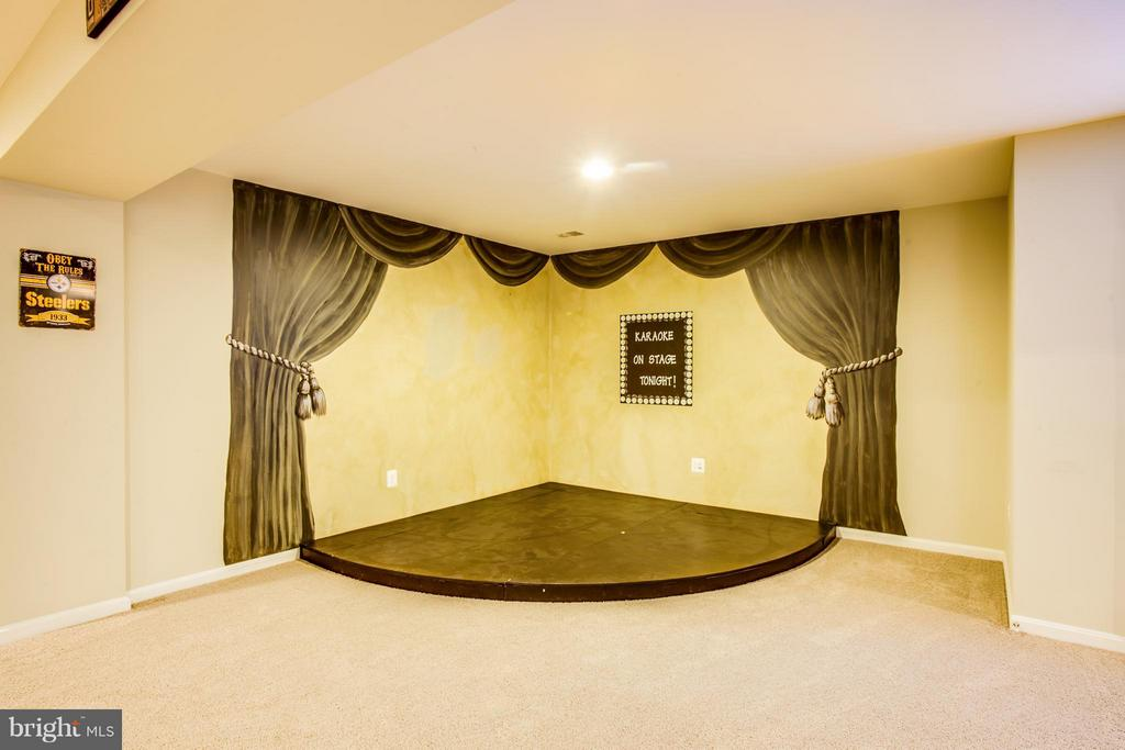 Basement with karaoke stage! - 35115 SOMERSET RIDGE RD, LOCUST GROVE