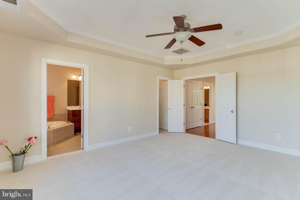 Generous master bedroom - 131 FORTNIGHTLY BLVD, HERNDON