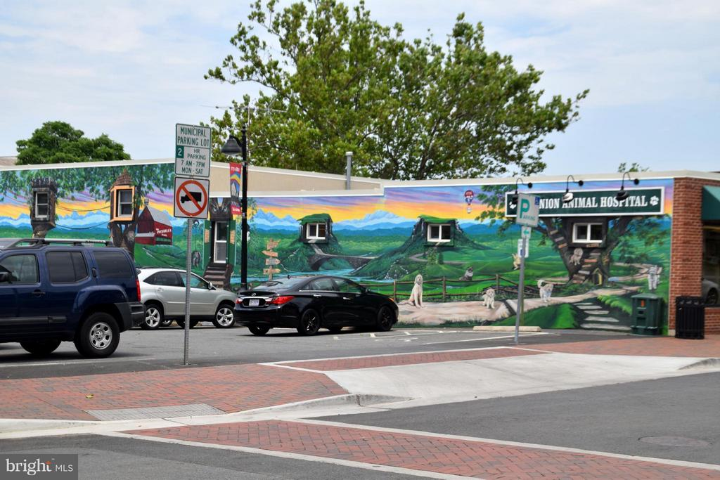 Murals on buildings in downtown Herndon - 131 FORTNIGHTLY BLVD, HERNDON