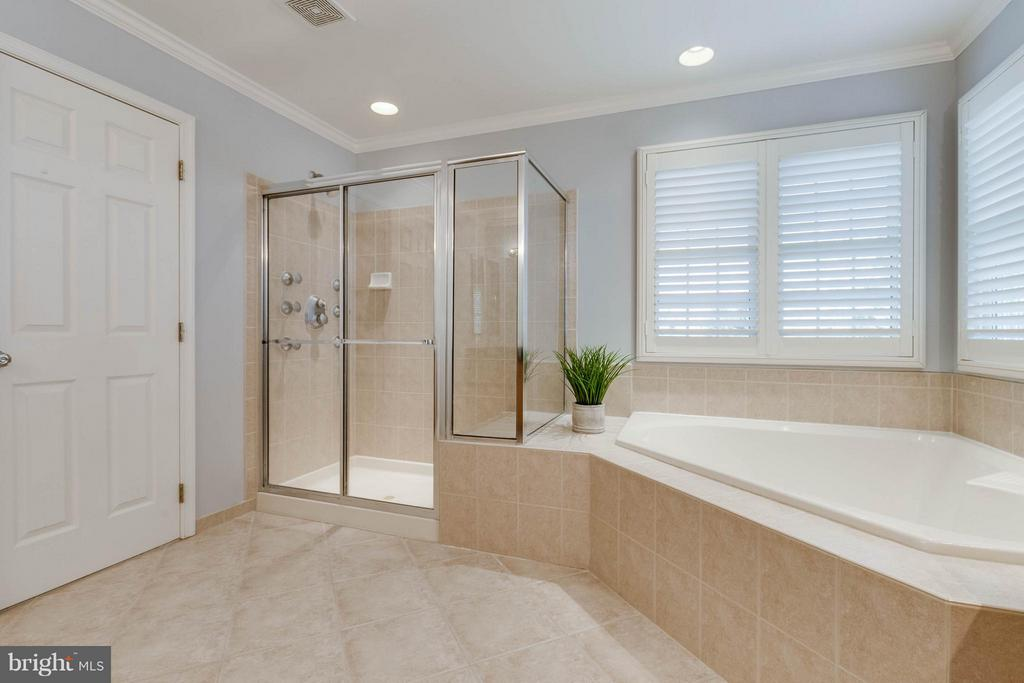 Master Bath with Soaking Tub & Separate Shower - 22752 PORTICO PL, ASHBURN