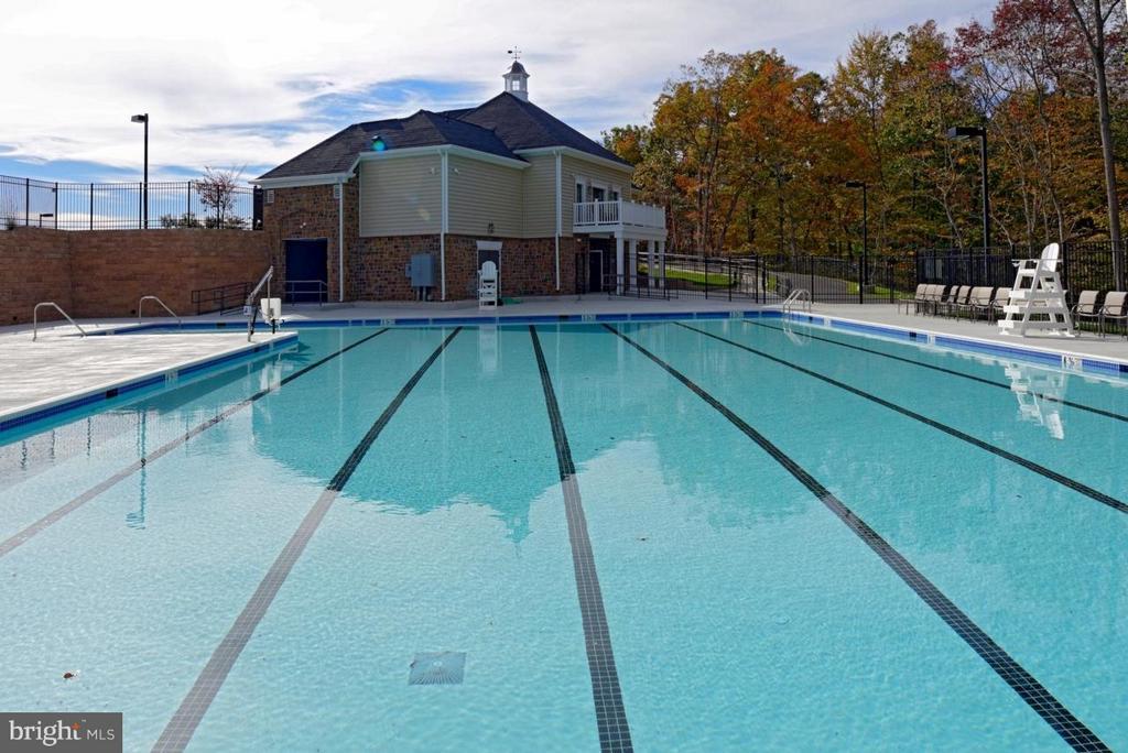 Community Pool - 107 FOUNDRY LN, STAFFORD