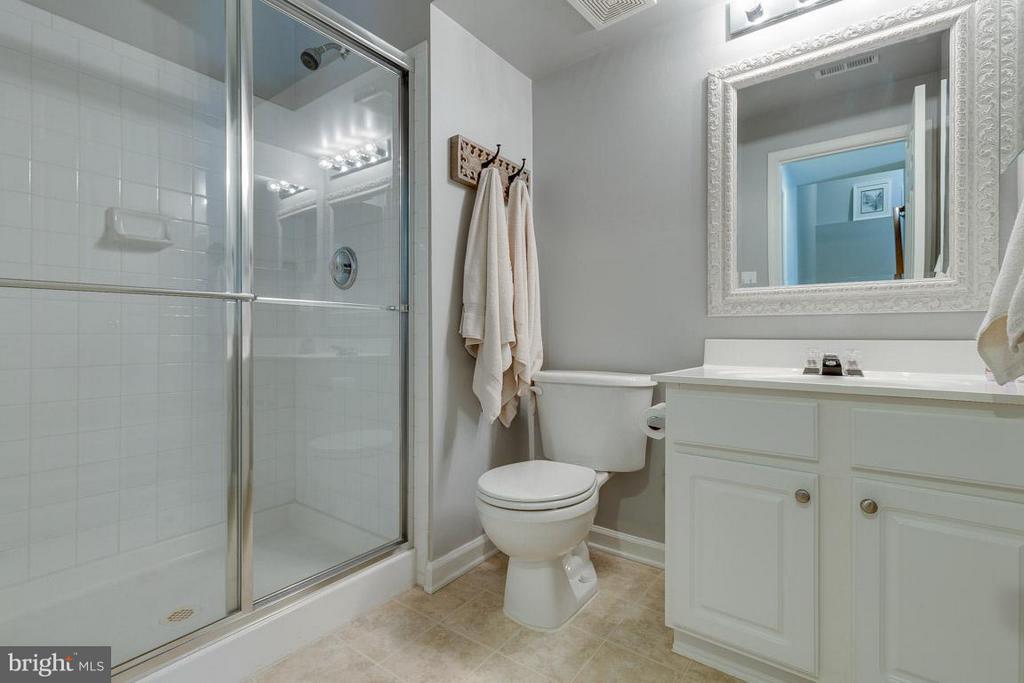 Basement includes full bathroom - 419 RUSERT DR SE, LEESBURG