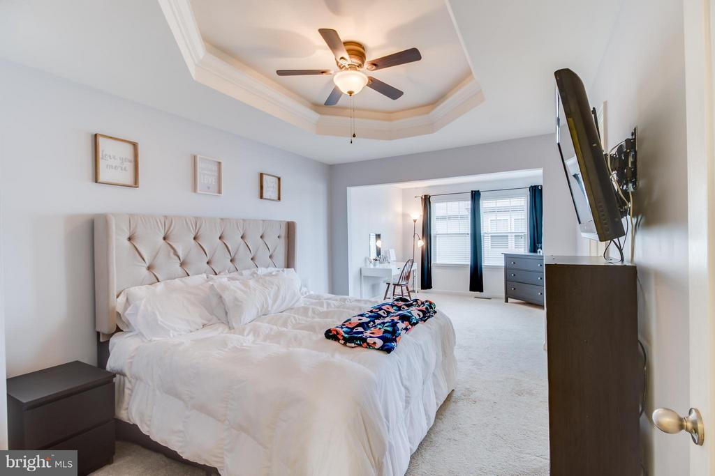 Luxury Master Suite - 103 DANDRIDGE CT, STAFFORD