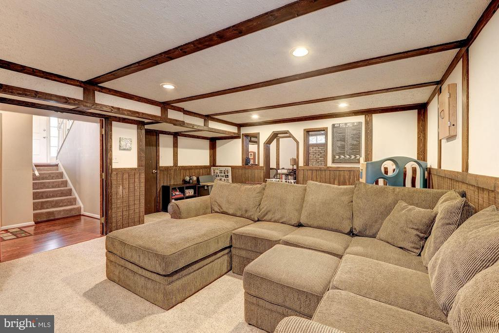 REC ROOM / THEATRE ROOM / PLAY ROOM - 12418 WENDELL HOLMES RD, HERNDON