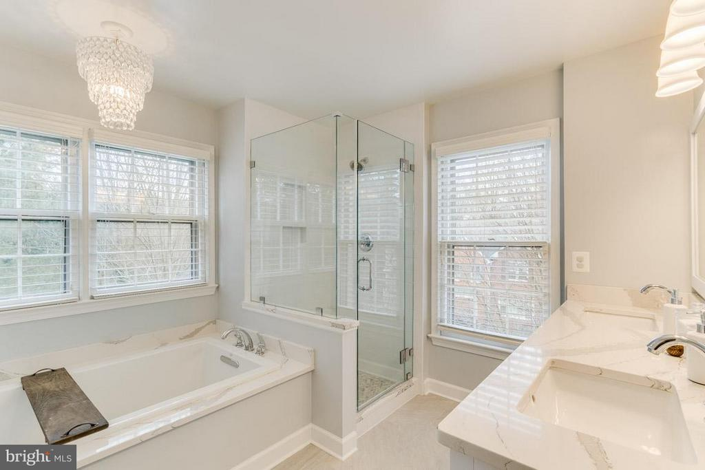 Luxury Master Bathroom - 11745 GREAT OWL CIR, RESTON