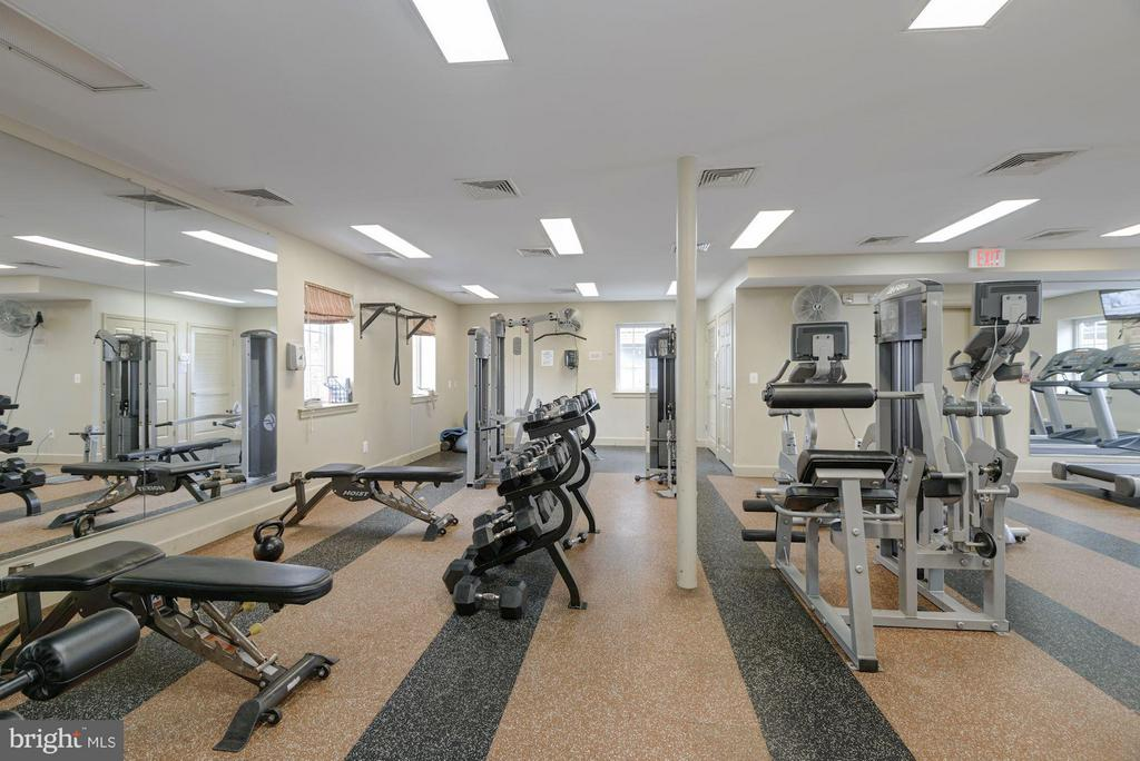 COMMUNITY GYM with CARDIO and WEIGHTS! - 4185 FOUR MILE RUN DR #B, ARLINGTON