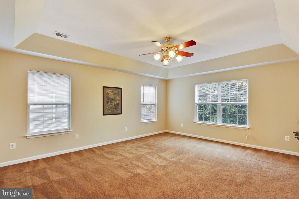 Master bedroom with tray ceilings - 9336 SUMNER LAKE BLVD, MANASSAS