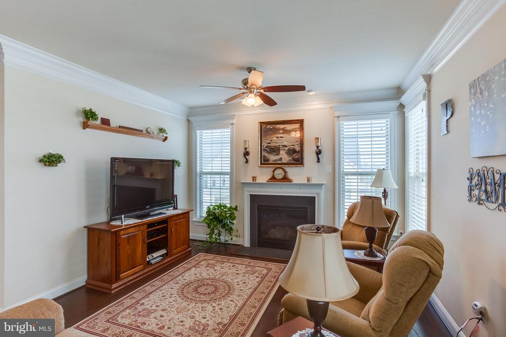 Wood Blinds and Ceiling Fan - 5819 E CARNIFEX FERRY RD, FREDERICKSBURG
