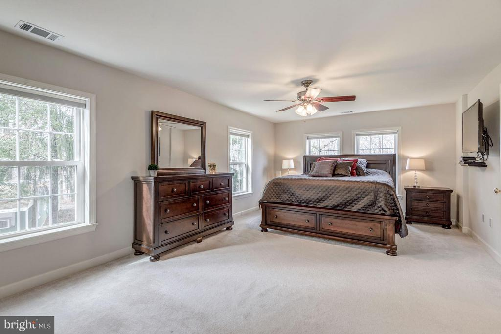 Bright Master Suite with Plenty of Windows - 7313 PINE DR, ANNANDALE