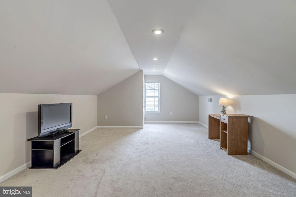 Third Floor Bonus Bedroom & Lounge Space - 7313 PINE DR, ANNANDALE