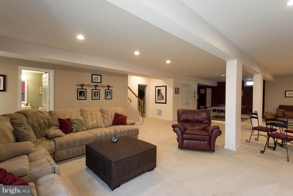 Recreation Room - 43723 WOODVILLE CT, CHANTILLY