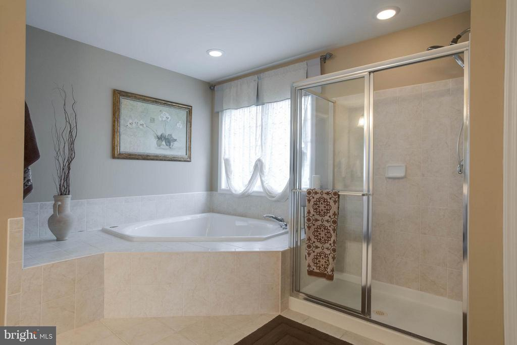 Master Bath - 43723 WOODVILLE CT, CHANTILLY