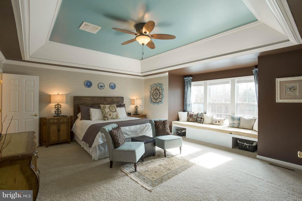 Master with custom finishes - 43723 WOODVILLE CT, CHANTILLY