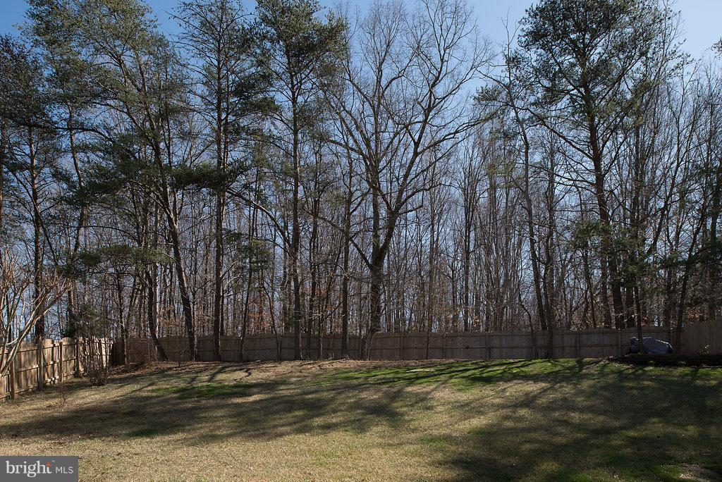 Fully fenced tree-lined backs to 26 wooded acres. - 7 BURNINGBUSH CT, STAFFORD