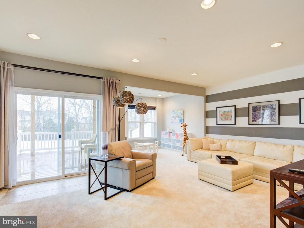 Lower Level Rec Room with Bump-out - 23572 BOCA FIELD TER, ASHBURN