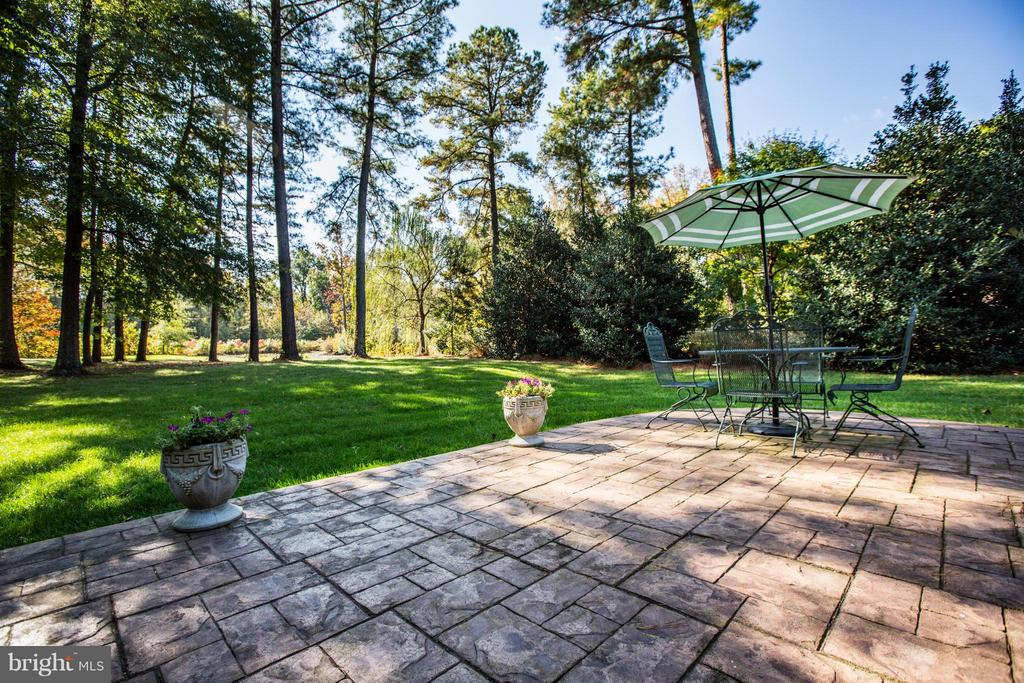 Stamped concrete patio is perfect for your grill. - 12707 WILLOW POINT DR, FREDERICKSBURG
