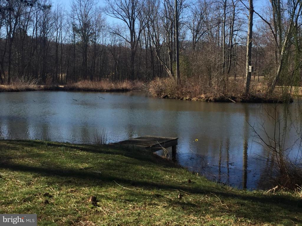 Outdoor pond right in your backyard. Let's go fish - 12707 WILLOW POINT DR, FREDERICKSBURG