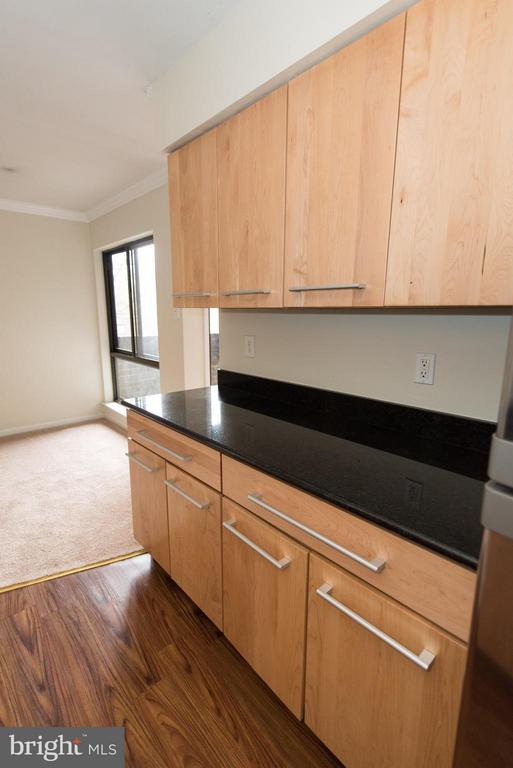 Plenty of counter space for your cooking needs - 11252 CHESTNUT GROVE SQ #346, RESTON
