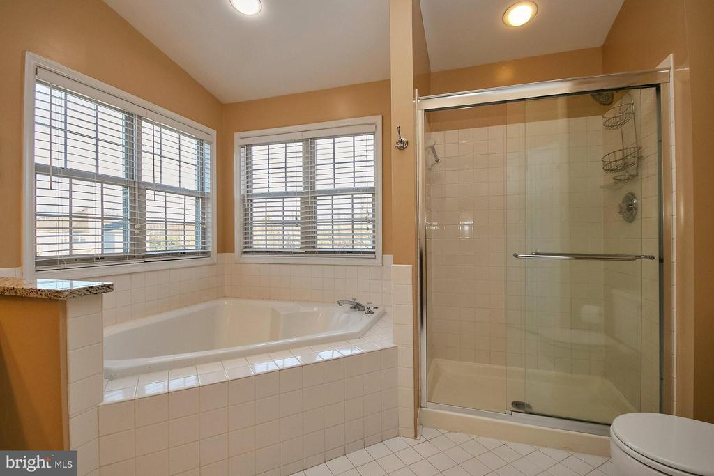 Large soaking tub and separate shower - 8397 CLEVELAND BAY CT, GAINESVILLE