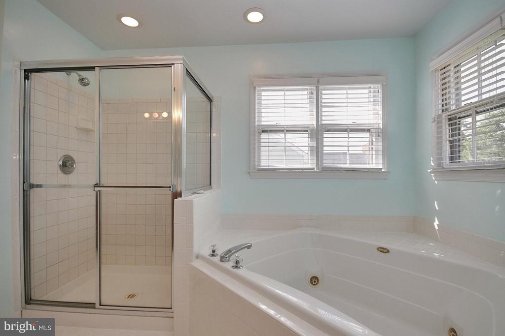 Master bath tub with jets and separate shower - 6726 HARTWOOD LN, CENTREVILLE