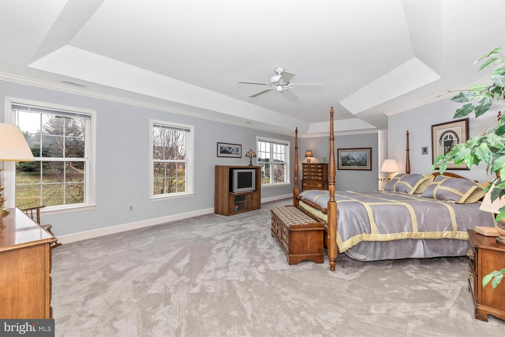 Tray ceiling and lots of natural light. - 11317 SANANDREW DR, NEW MARKET